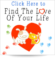 Find The Love of Your Life