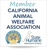 California Animal Welfare Association